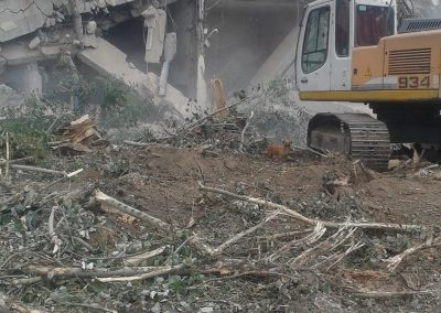 Demolare Timisoara (7)